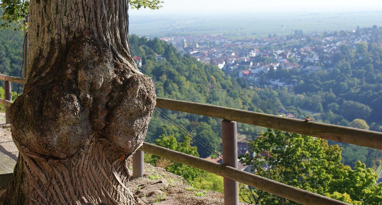 Rechtsberatung Limburg